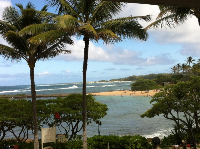 Turtle Bay Oahu